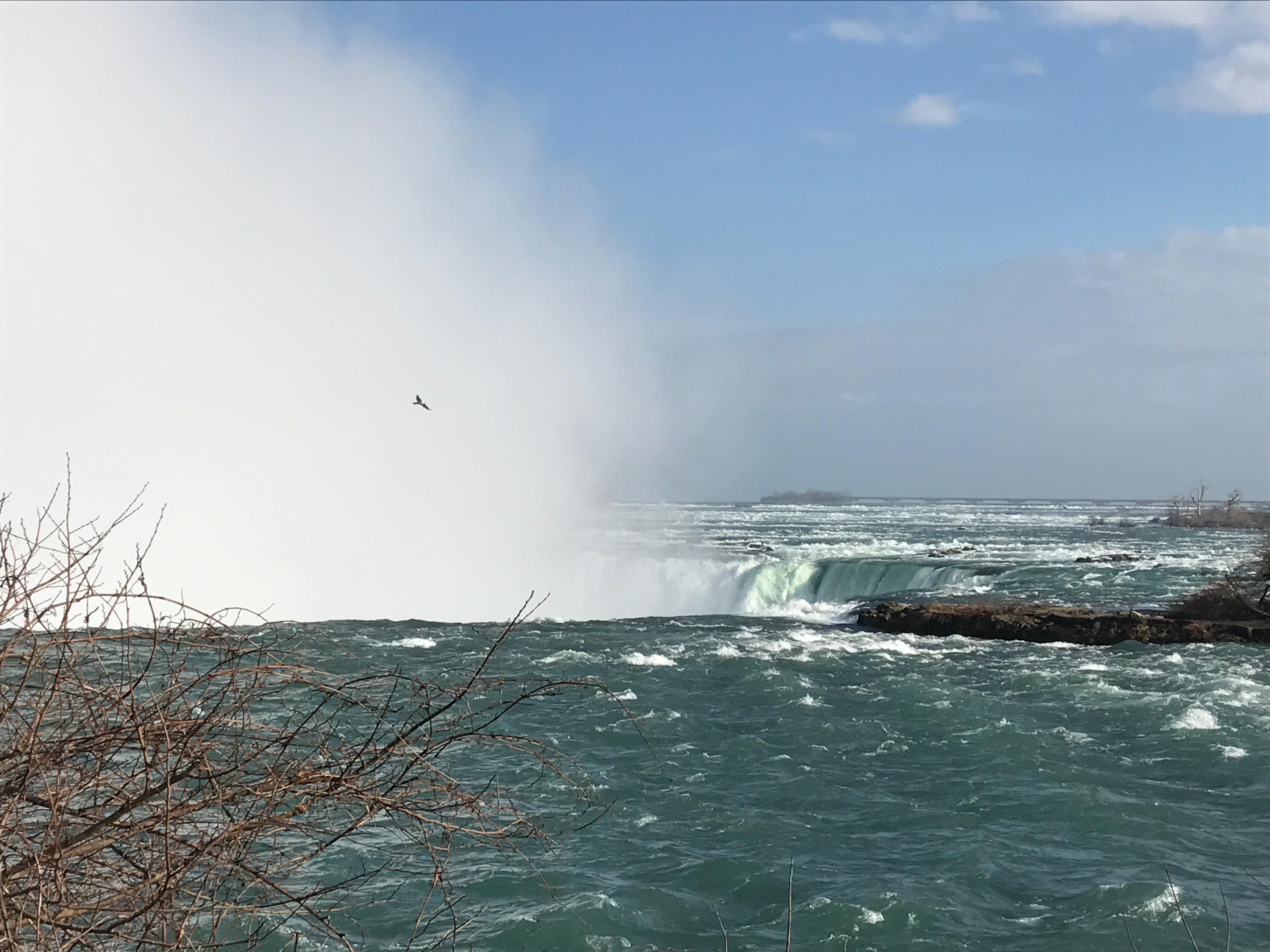 ナイアガラの滝ニューヨーク日帰りツアーの日程詳細|口コミ評判