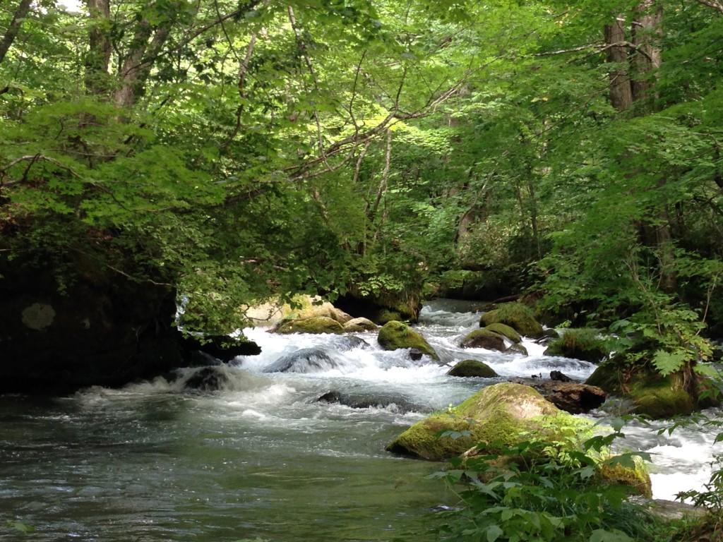 奥入瀬渓流の歩き方【散策マップ】行き方・観光の見どころとポイント|青森県十和田湖