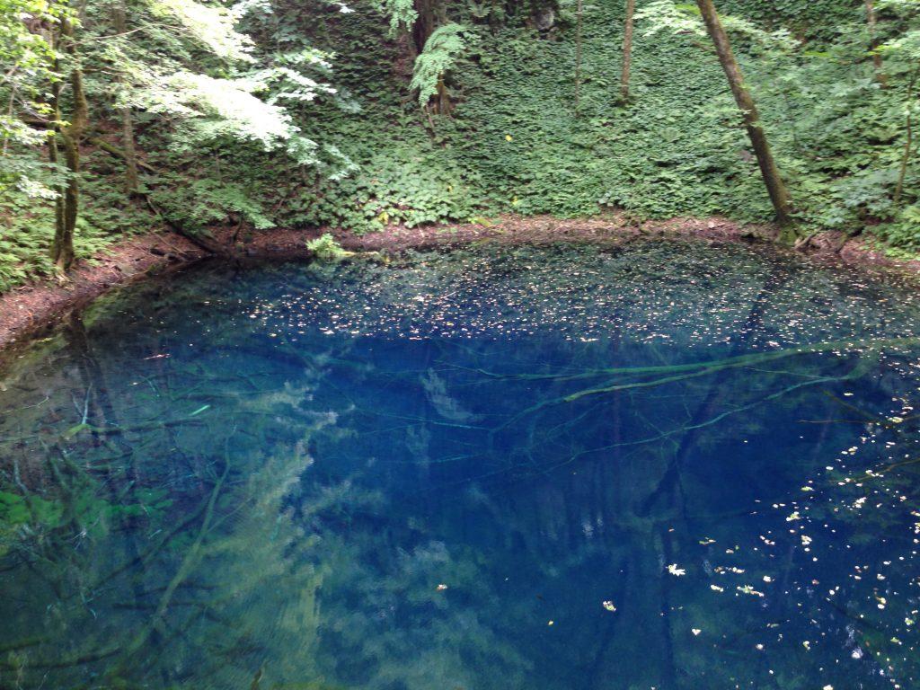 青池の行き方・見どころまとめ【散策マップ】青森十二湖観光